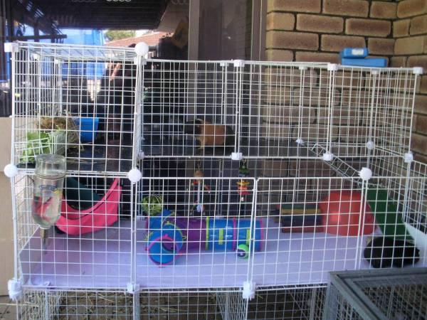 how to make a guinea pig cage bigger