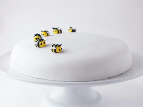 Cute Cake Fuzzy Today
