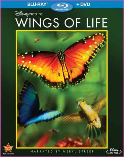 Disneynature-Wings-Of-Life
